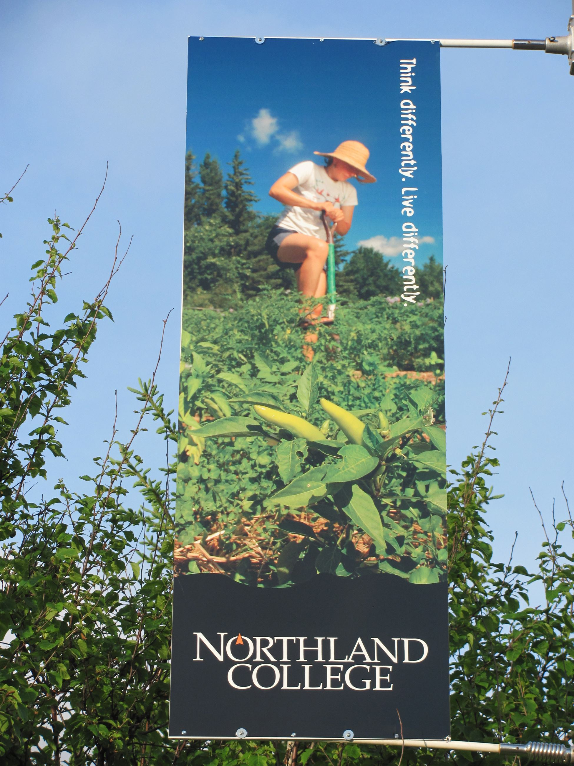 Northland Banner Closeup 1